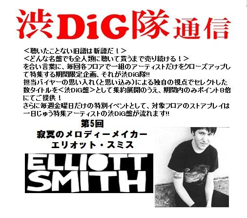 DiG11